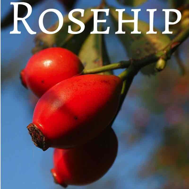 Rose Hips Brewers Direct Inc The Wine Specialist